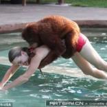猩猩这样学游泳的