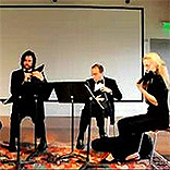 iPad大乐队,小提琴表演