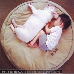 宝宝和斗牛犬的幸福生活,萌翻了